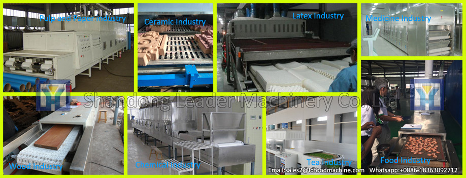 LD Continuous belt microwave dryer machine for jujube /Ziziphus jujuba microwave tunnel dryer