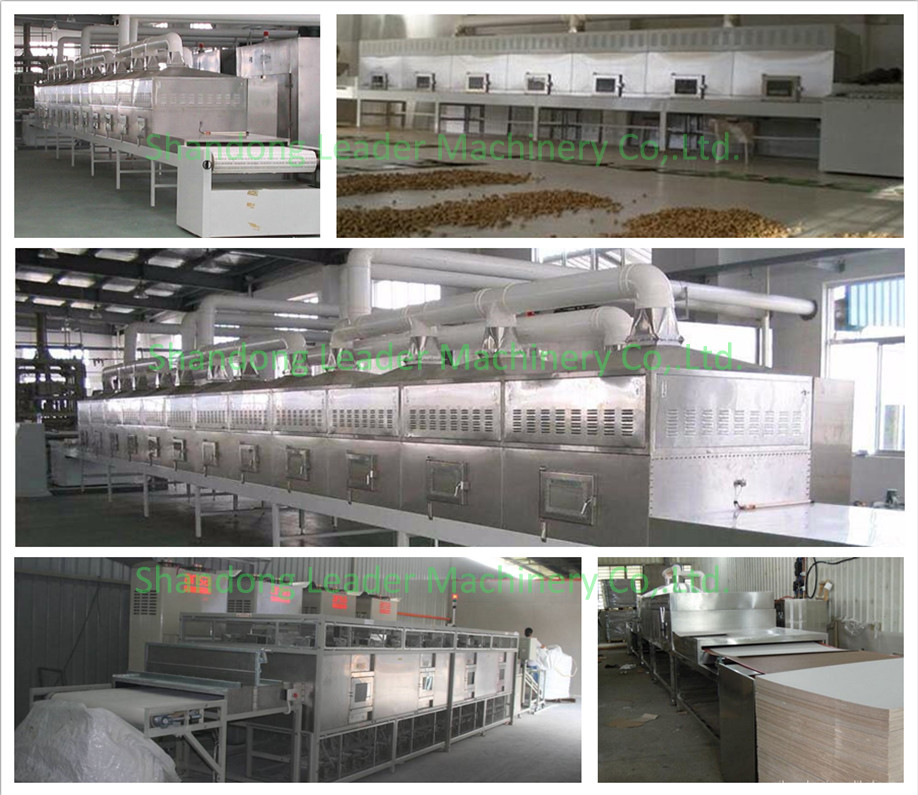 High efficiency box type microwave vegetables dryer