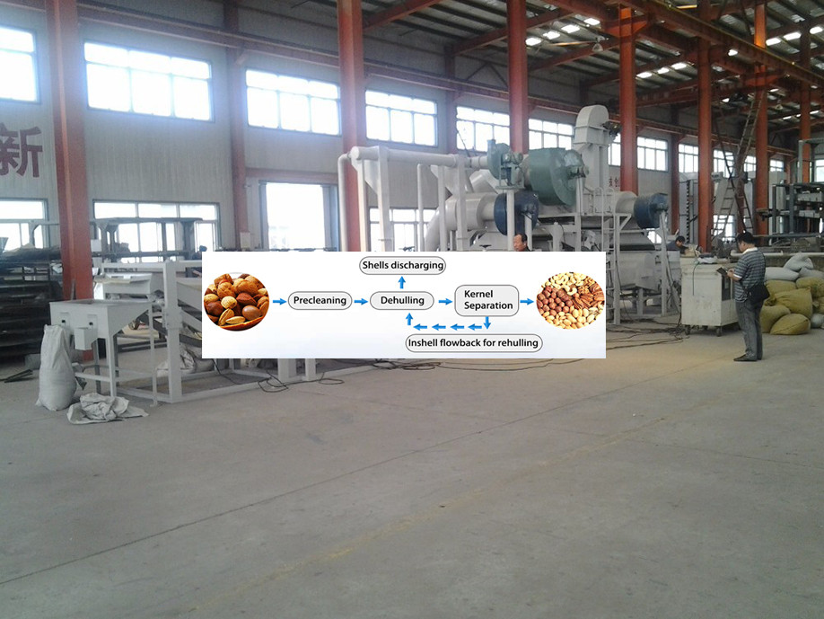 Oil sunflower seed sheller machine/Oil sunflower shelling machine