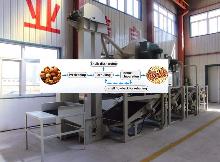 Hot selling Professional Cocoa Bean Peeling machine
