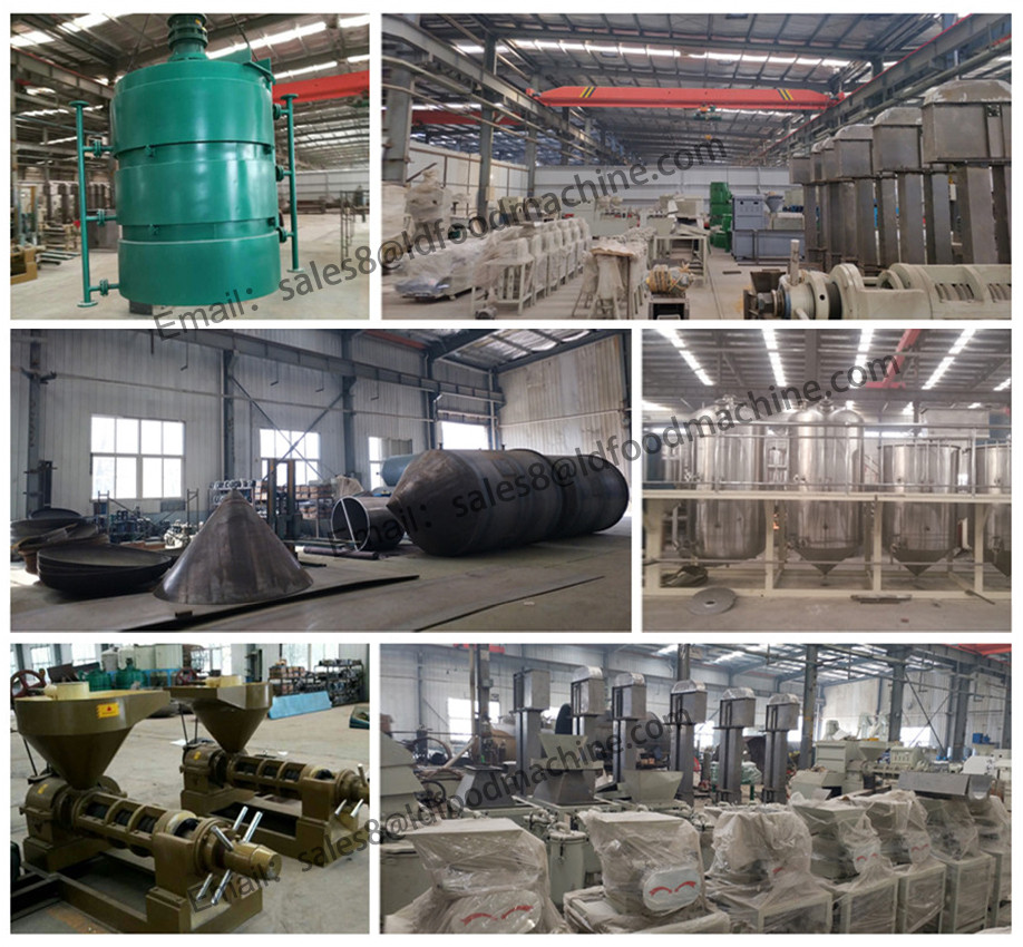 20TPH palm fruit oil produce equipment long using life