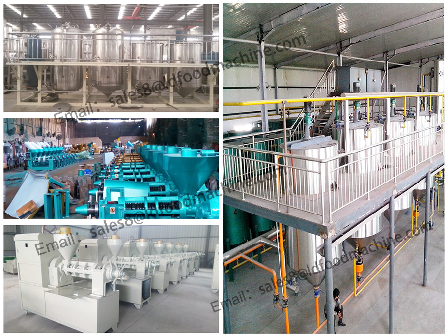 Big discount! peanut seed oil refinery machine for cooking oil