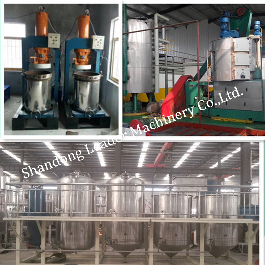 2016 Hot selling stainless sesame oil extraction machine, olive oil press machine for sale