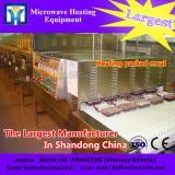 Tunnel microwave condiment dehydrator machine SS304