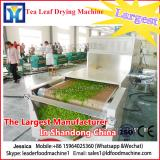 Mango slices of microwave drying equipment