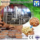Professional nuts kernel shell separator machine