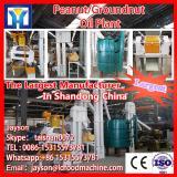 Hot sale groundnut oil pure refined machine